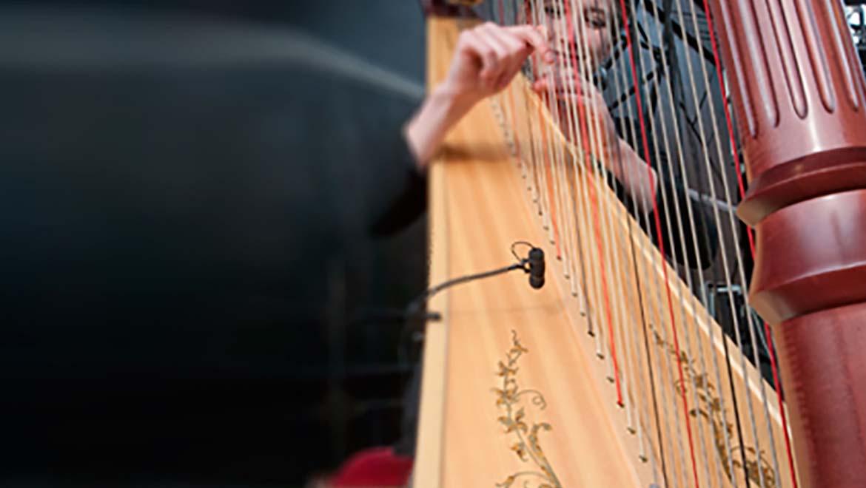 Harp-L-1.jpg