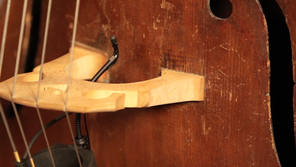 How-to-mic-a-Double-bass-with-dscreet-gm1600-DPA-Microphones-L.jpg